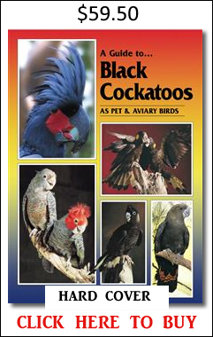Black Cockatoos book neville connors