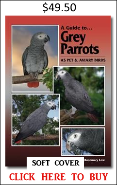 Grey Parrots Rosemary Low book