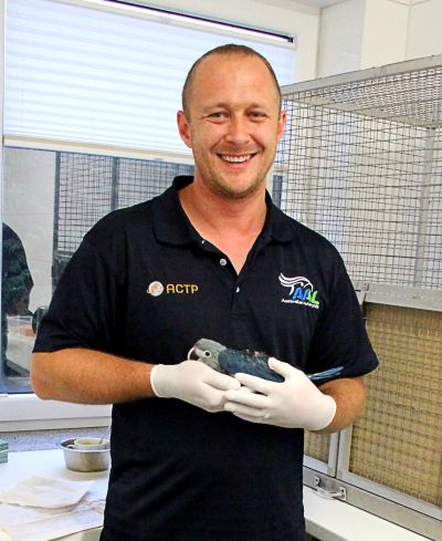 Simon Degenhard holding a Spix's Macaw chick bred by ACTP in 2015