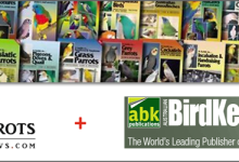 ParrotsDailyNews officially becomes distributor of ABK bird books. We ship worldwide!