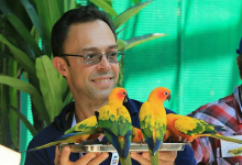 Tony Silva: Understanding parrots is my obsession. PART I