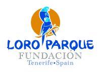 logo lp2