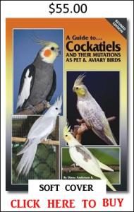 Cockatiels soft
