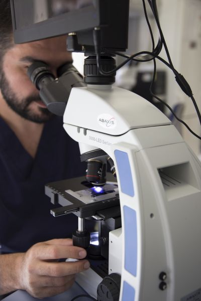 5) Microscop